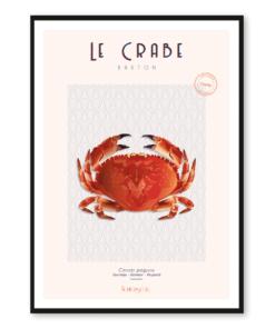 Affiche Crabe breton